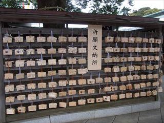20140211_明治神宮_建国記念日21_320.JPG