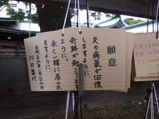 20140211_明治神宮_建国記念日22_320.JPG