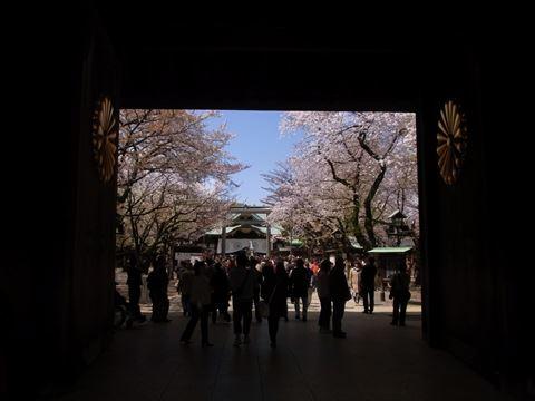 20140405_靖国神社と桜02_480.JPG