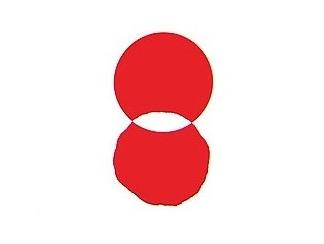 民主党旗.jpg