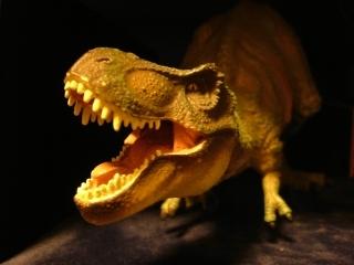 20090415_恐竜の時代.jpg