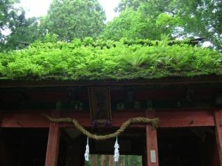 20090712_神々2_木曽路_S.jpg