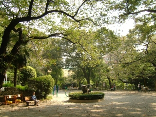 20091018_東郷公園01.jpg