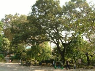 20091018_東郷公園03.jpg