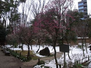 20140211_靖国神社19_320.JPG