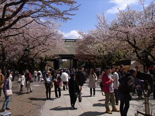 20140405_靖国神社と桜04_320.JPG