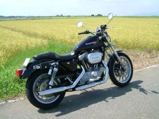 バイクと稲穂.jpg